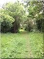 TL2958 : Eltisley Lane by Dave Thompson