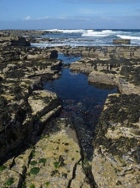Rock Pool, Bow Head, Westray, Orkney