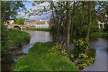 NT5173 : River Tyne, Haddington by Stephen McKay