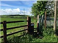 SJ8252 : Talke Pits: public footpath across field by Jonathan Hutchins