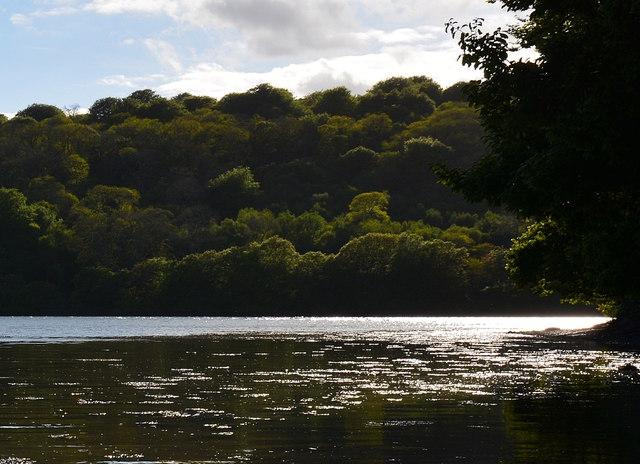 View across the Fowey at St. Winnow, Cornwall