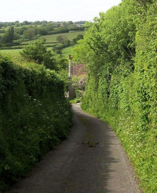 Lane past Manor Farm