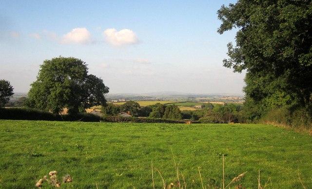 Field at Widegates