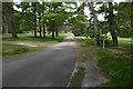 SU9357 : Beech Grove, Pirbright by Alan Hunt