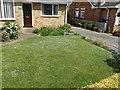 TF0820 : Speedwell Lawn by Bob Harvey