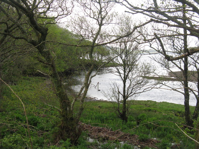 Fearnach Bay through the trees at Melfort
