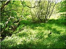 SE0722 : Elland FP80 (E4), Greetland by Humphrey Bolton