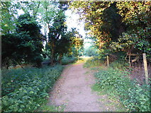 TM2743 : Footpath leading to Fenn Lane by Chris Holifield