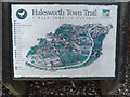 TM3877 : Halesworth Town Trail sign by Adrian Cable