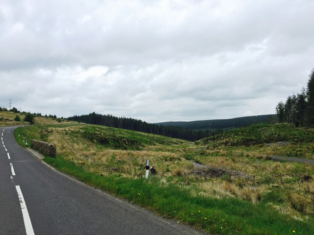 Banagher Forest at Glenedra