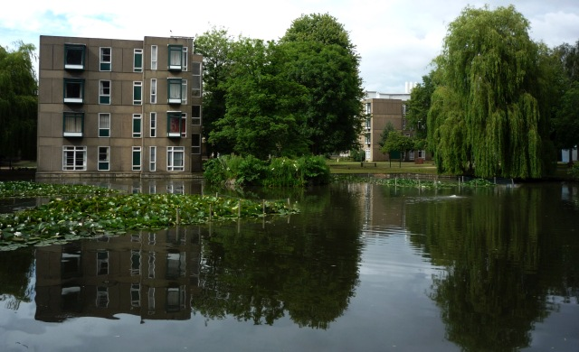 Lake and Langwith B block