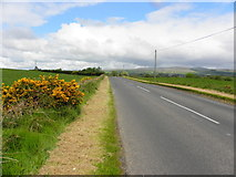H5373 : Grass cut along Racolpa Road by Kenneth  Allen