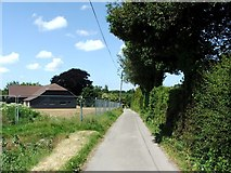 TR3156 : Lane leading to The Street from Grove Manor, Woodnesborough by Chris Whippet