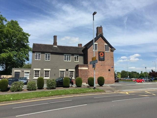 Trent Vale: The Orange Tree