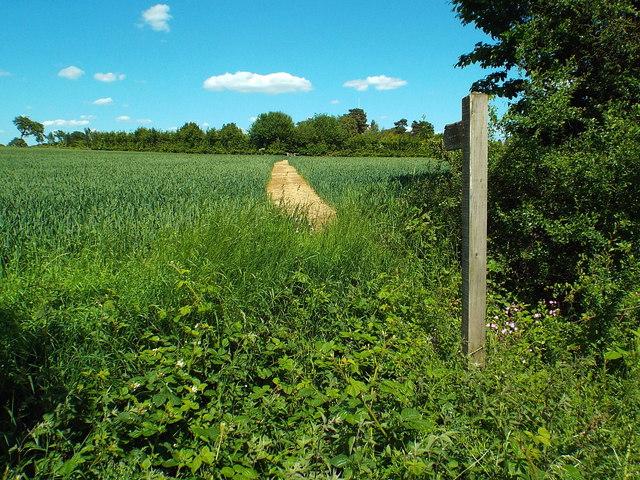 Public footpath at Fryerning, Essex