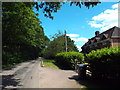 TL6100 : Blackmore Road, near Fryerning by Malc McDonald