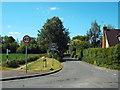 TQ5899 : Blackmore Road, Hook End, near Doddinghurst by Malc McDonald