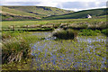 NY5958 : Valley of Howgill Beck by Ian Taylor