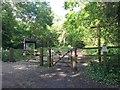 TQ1952 : Entrance to Headley Heath by Jonathan Hutchins