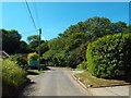 TQ5299 : Berwick Lane, near Stanford Rivers, Essex by Malc McDonald