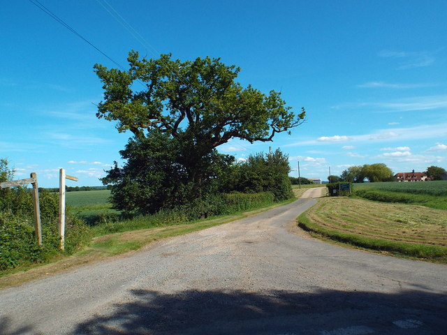 Driveway to Knightlands Farm, near Stanford Rivers