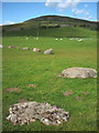 NY6408 : The odd one out at Gamelands stone circle by Karl and Ali