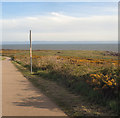 SS8077 : Lock's Common from the Wales Coast Path by eswales