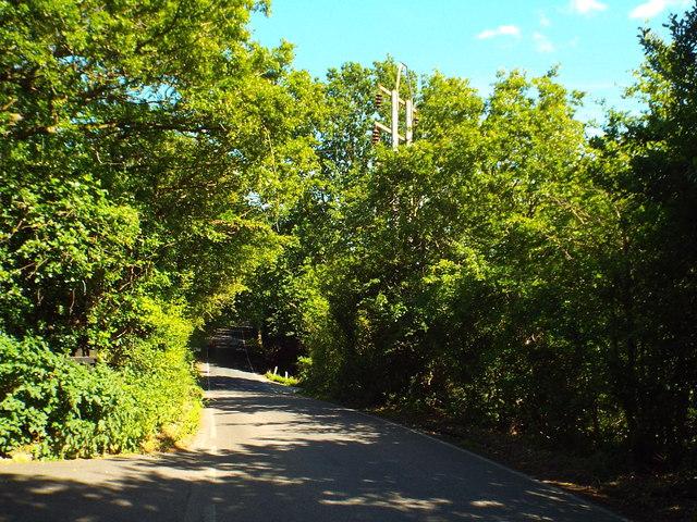 Banks Lane, Mount End near Epping