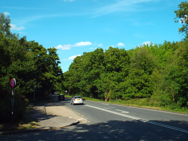 Epping Road, Epping Forest