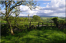 NY5764 : Stile and gate near Banks by Ian Taylor