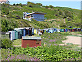 NT9166 : Beach huts at Coldingham Sands by Oliver Dixon