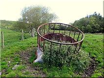 H5475 : Animal feeder, Streefe Glebe by Kenneth  Allen