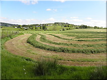 H5575 : Turned hay, Altdrumman by Kenneth  Allen