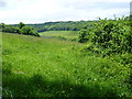 TQ4459 : View across the valley from Cudham by Marathon
