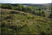 SX6870 : View towards Venford Reservoir by jeff collins