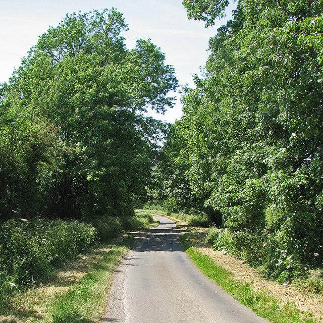 Down Park Road