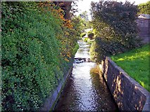 TF0919 : The river waterfall at Bourne, Lincolnshire by Rex Needle