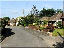 TR3451 : Ashton Close, Great Mongeham by Chris Whippet