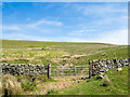 NY6336 : Dry stone wall with gate by Trevor Littlewood