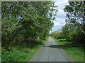 NZ3949 : National Cycle Route 1 by JThomas