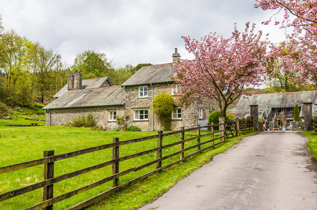 Driveway to Graythwaite Home Farm