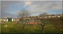 SX9065 : Football match, Torquay Academy by Derek Harper