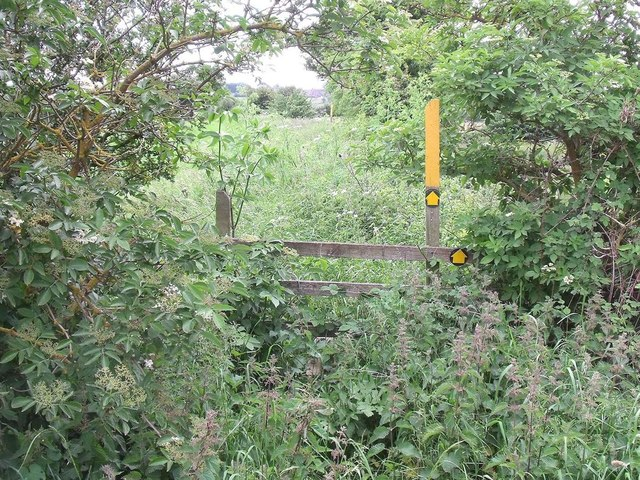 Overgrown stile on the footpath to Castle Donington
