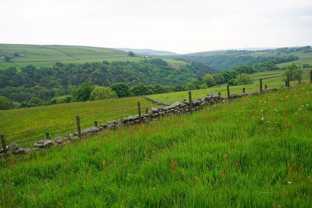 Fields above Hebden Dale