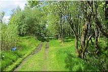 NS6725 : River Ayr Way by Richard Webb