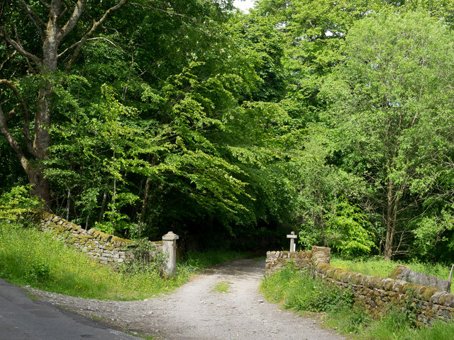 Private road entering woodland
