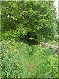 SE0722 : Norland Town Road Footpath, Norland by Humphrey Bolton