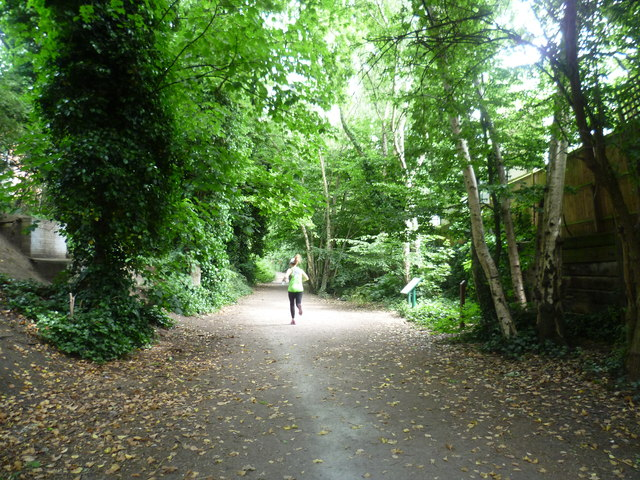 The Parkland Walk near Muswell Hill Road