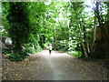 TQ2889 : The Parkland Walk near Muswell Hill Road by Marathon