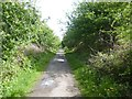 NZ3274 : Former railway track footpath to Holywell Dene by Derek Voller